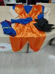 Vestito Carnevale Dragon Ball